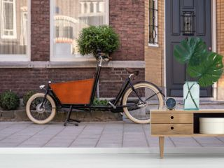 Typical dutch carrier bicycle parked in front of a house. Modern urban parents use these carrier bikes to transport their children or groceries