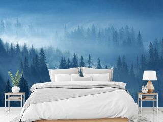 Mystical mountain pine forest in fog in fantasy style, fairy tale spooky looking woods.