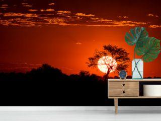 The Last Sunset. Namib Desert, Namibia.
