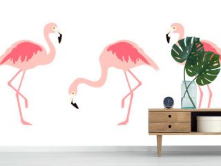 Flamingo tropical bird collection isolated on white background