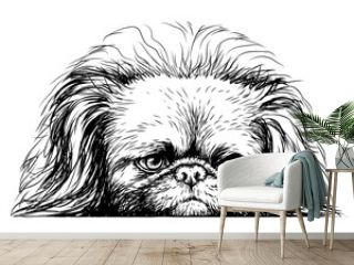 Pekingese dog. Sticker on the wall in the form of a graphic hand-drawn sketch of a dog portrait. Separate layer