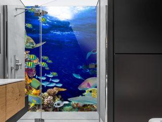 colorful wide underwater coral reef square banner background with many fishes turtle and marine life / Unterwasser Korallenriff Hintergrund quadratisch