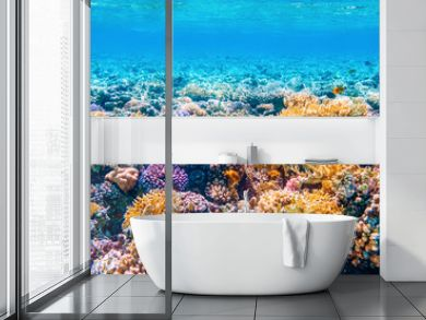 Beautifiul underwater world with tropical fish and coral reefs