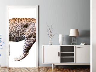 Movement leopard
