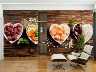 Panorama of healthy fresh ingredients for pet food