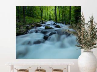 Waterfall cascades. Long exposure image of a wild forest river in Slovakia.