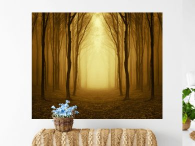 path through a golden forest at sunrise