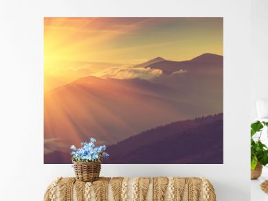 Panoramic view of mountains, autumn landscape with foggy hills at sunrise.