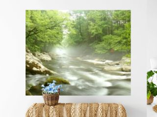 Panorama of a river flowing through a forest.  Great Smoky Mountains, TN, USA.