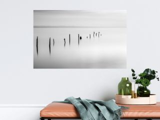 Wooden pegs in the sea