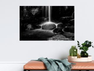 Wild Forest Waterfall