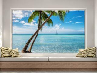Palm beach in Saona island, Dominican Republic