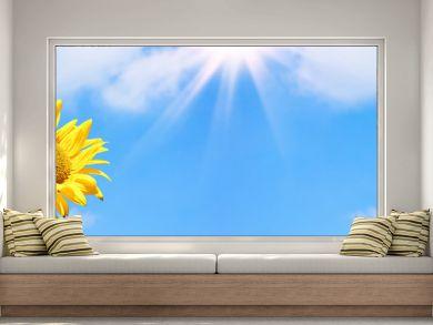 sonnenblume, blauer himmel, banner