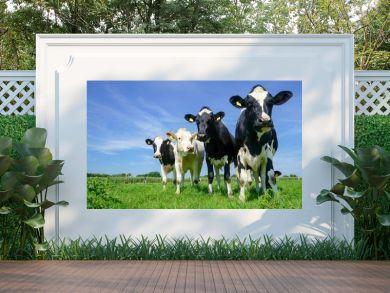 Vier Rinder auf der Weide, Formation