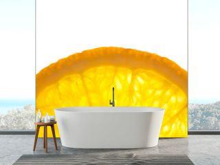 Slice of fresh Orange / Super Macro / Back lit