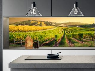 Vineyard Light