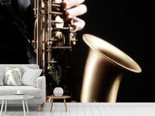Saxophone player hands. Saxophonist