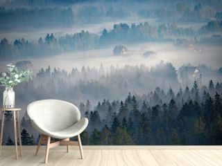Las w mgle