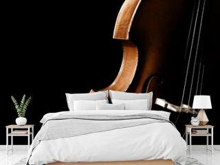 Double bass. Contrabass classical music instrument