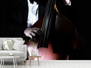 Double bass player contrabass playing