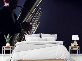 Tuba player brass instruments. Hands playing euphonium