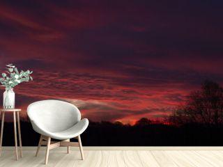 Mesmerizing scenery of a sunset