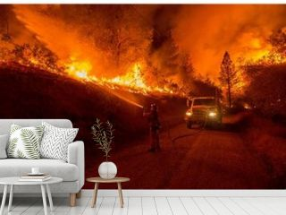 Fuego en la naturaleza, fuego de tornado en el bosque, fuego en el bosque, fuego gana en el fuego del bosque, lava. , Fire in nature , tornado fire in the woods , fire in the woods , fire wins in the