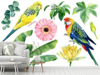 Set of watercolor birds parrots, flowers and palm leaves isolated on white background, botanical illustrations