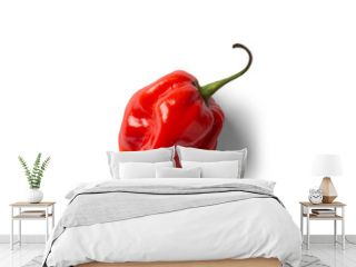 red hot chili pepper on top angle beautiful White and grey background