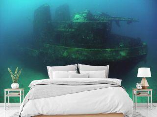 underwater ship wreck , caribbean sea , Venezuela