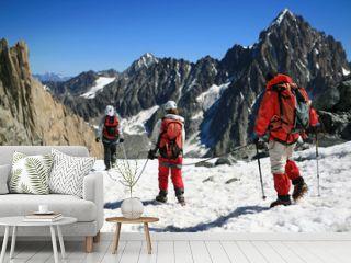 Alpinisme sur le glacier d'argentiere