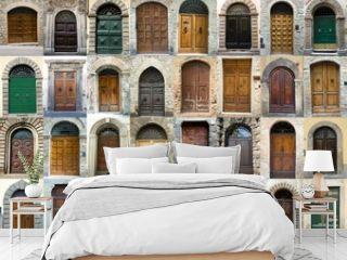 Collection vintage obsolete elegant tuscany door