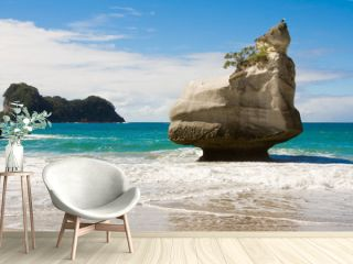 Cathedral Cove Beach, New Zealand
