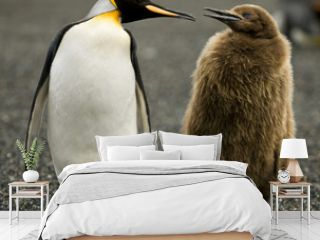Penguin Parenting
