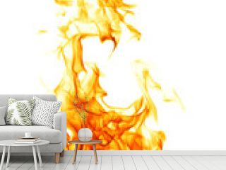 Fire flame isolated on white backgound..