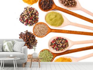 spices in the spoons isolated on white