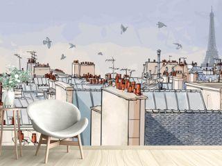France - Paris roofs