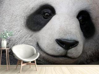 close up of panda