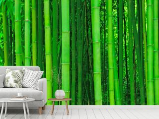 light bamboo