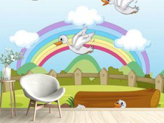 Ducks and a rainbow