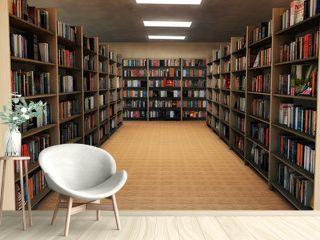 bookshelf in library