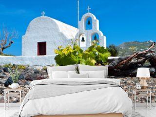 Vineyard field at Santorini island in Greece.