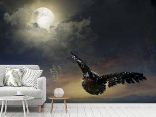 owl in the night sky.