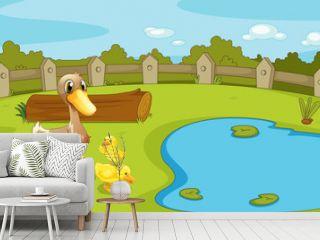 Ducks near the small pond