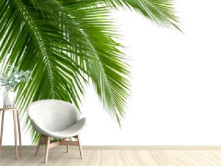 Leaves of coconut tree isolated on white background, clipping pa