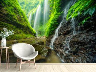 Madakaripura waterfall in Bromo national park, East Java, Indonesia, Asia