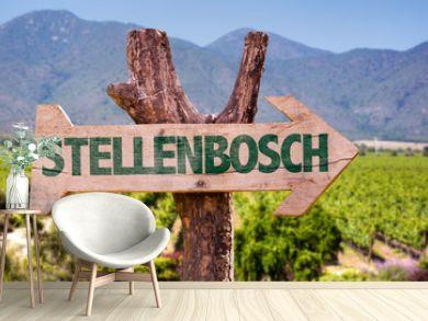 Stellenbosch wooden sign with vineyard background