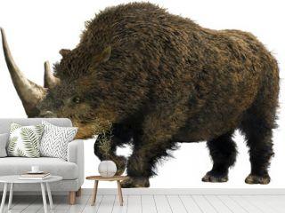 Woolly Rhinoceros/Collage representative of the Pleistocene (Ice Age) - woolly rhinoceros.