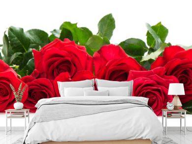 Few red roses