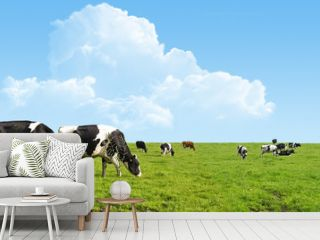Cows grazing on a green field.